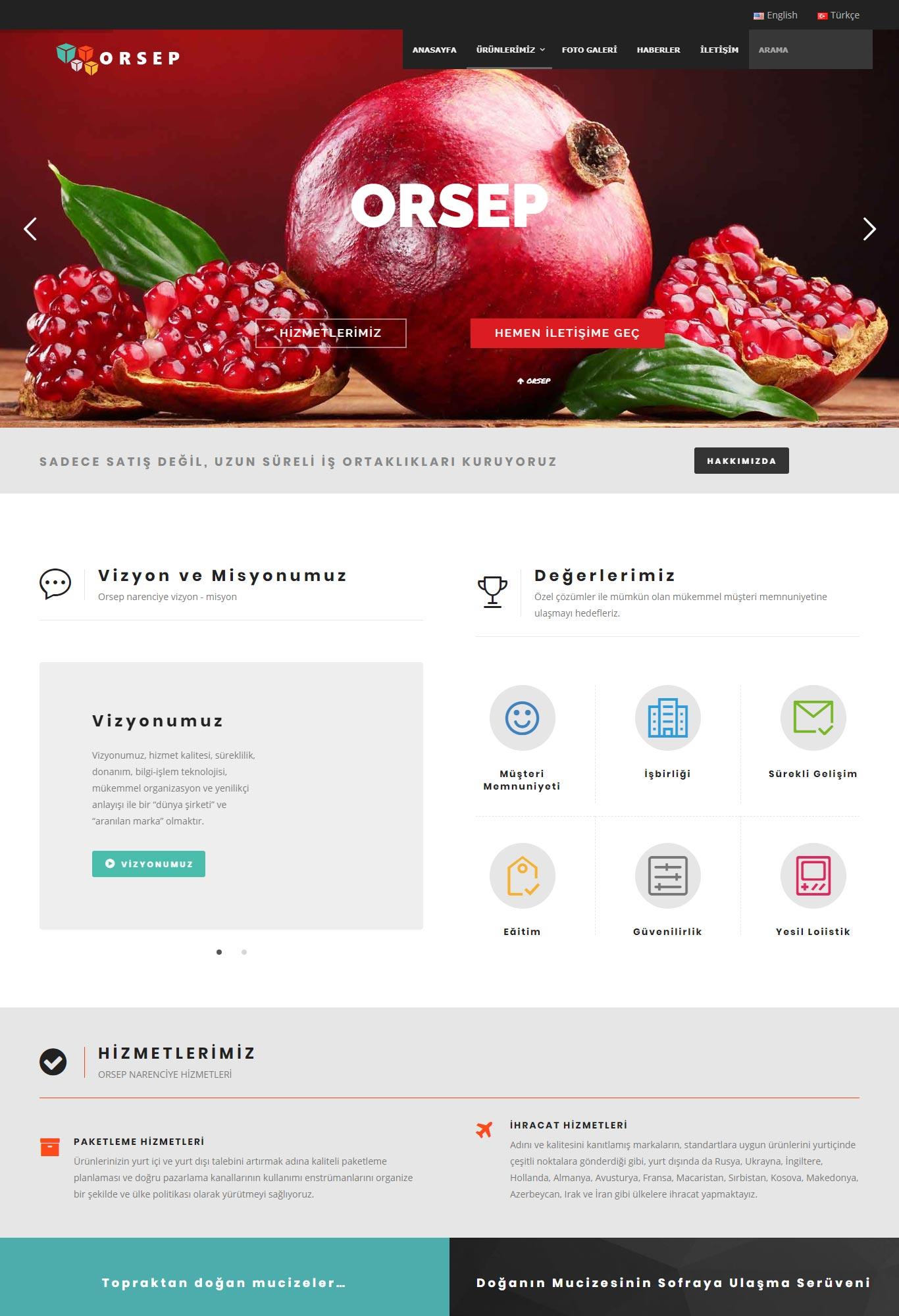 Orsep Narenciye Web Tasarım