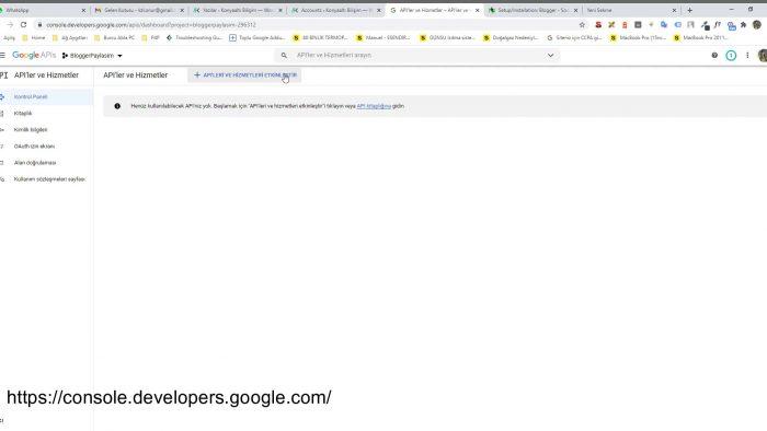 NextScripts SNAP Blogger ayarları
